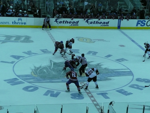 Lake Erie Monsters game